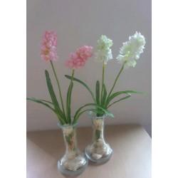 flesje met hyacint