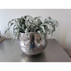 foamcactus 2 st.